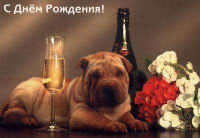 роничка, поздравляю тебя с днем рождения