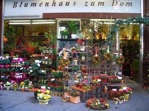 Жалко, что на такой маленькой фотке плохо видно, какой красивый магазин цветов, в Вене они мне ну о...