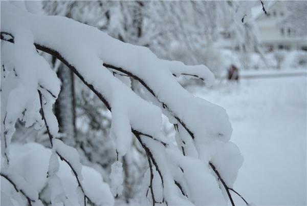 Ну и я со снежным продолжением - 4