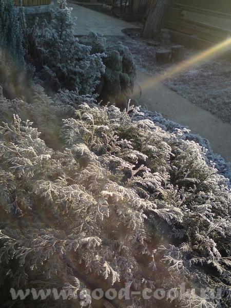 Да, вот зима у вас - красота - 2