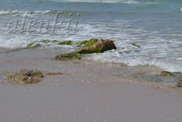 Своё тепло дарит ласковое солнце голубым волнам и золотому песку - 3