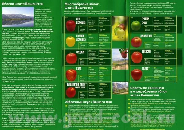 Особенно меня повеселило, что в ней сообщается, что яблоки не содержат жиров и холестерина - 2