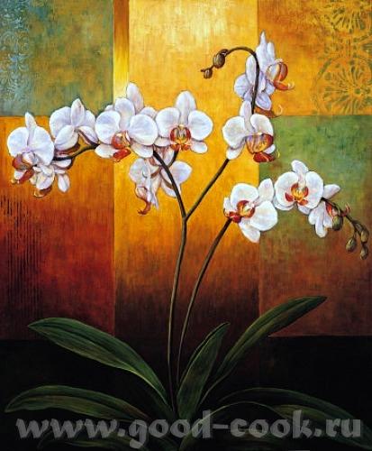 Надюнчик У меня есть такие картины с орхидеями может быть они вам понравится Martin Johnson - 6