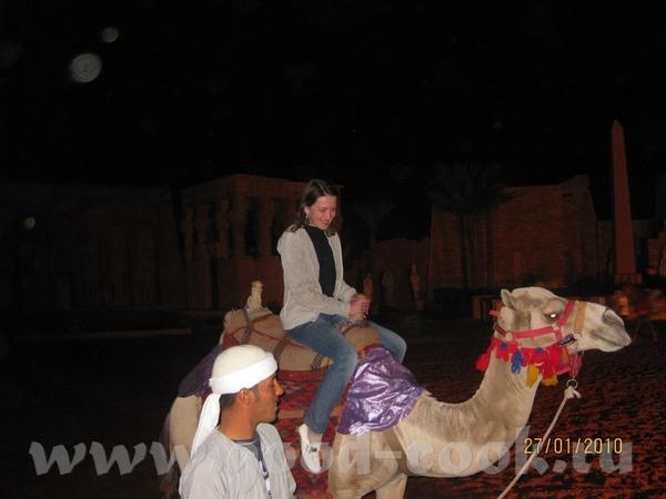 А еще я первый раз в жизни проехалась на верблюде, по кончанию шоу восторга было как у ребенка