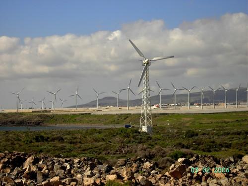 Ветер частый, если не постоянный гость на архипелаге, поэтому везде можно увидеть вот такие штуки,...