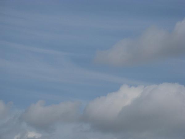 Хочу еше вам показать немного Калифорнийского неба, очень красивого с необычными оттенками синевы - 2