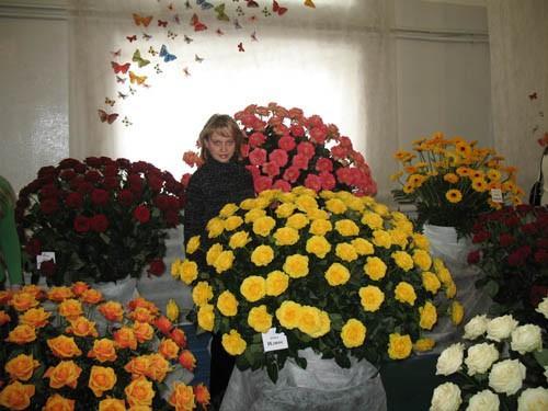 Царство роз Гитара из цветов Фонтан