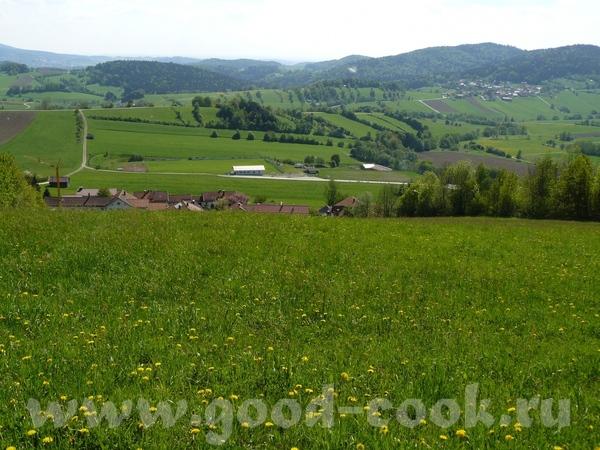 Вообще там места, что откуда не посмотри, красоту видишь - с горы в таль, из таля зелёные сопки