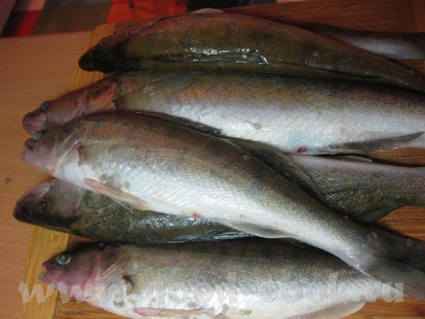Как и обещала несу вам вкусный рыбный рецепт, у меня он приготовлен из судака, но вы можете сделать... - 5