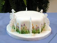 жаль, плохо видно, но изящные птички а от этого торта я просто пищу (с)