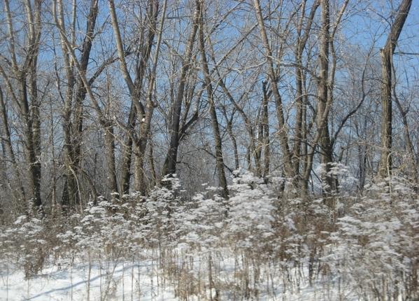 снежинки на окне Просто зимний пейзаж пурпурный закат - 2