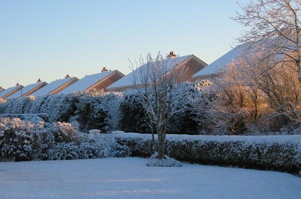 Спасибо за спасибо Зима у нас, в Ирландии Обычно у нас снега не бывает, или только один день после...