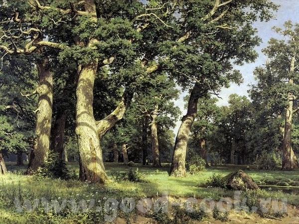 Картины Шишкина, которые находятся в Киевском Музее Русского Искусства на севере диком ручей в лесу... - 3