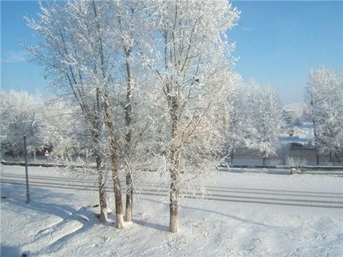 Полюбуйтесь нашей сибирской зимой