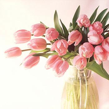 Надюша, с праздником весны и любви тебя
