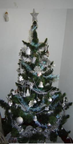 а ето моя елка