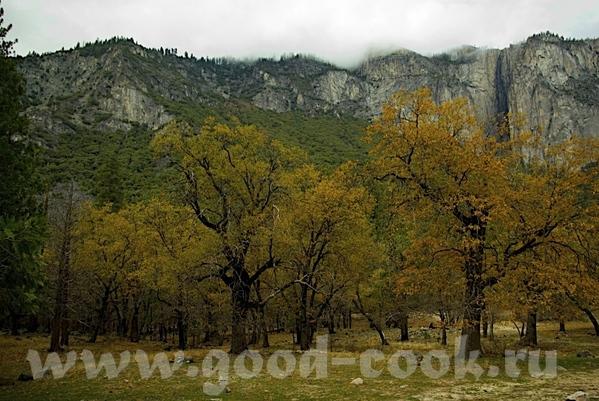 Часть 2 - Йосемити парк - 8