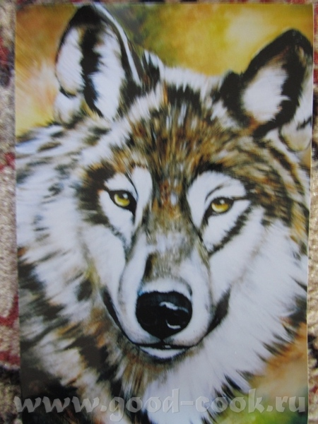 Волк Лев