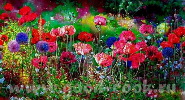 Mаки от (и другие цветы) Boli Libo музыка и цветы от Elizabeth Kawala Brian McCarthy John Ebner... - 2