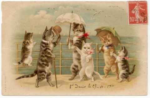 у меня есть коллекция натасканых открытокс кошками, может найдется