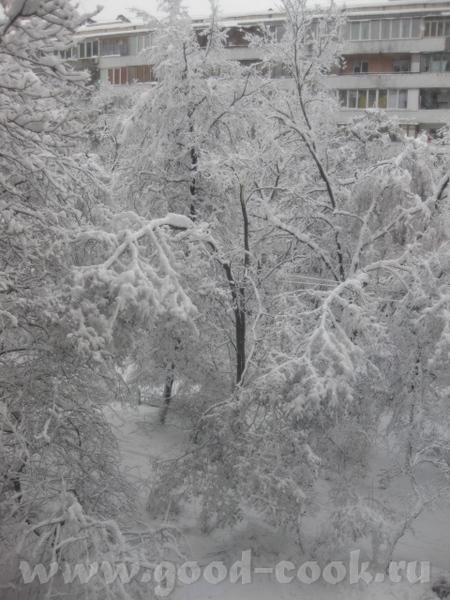 А у нас за один вечер вот сколько снега навалило - 2