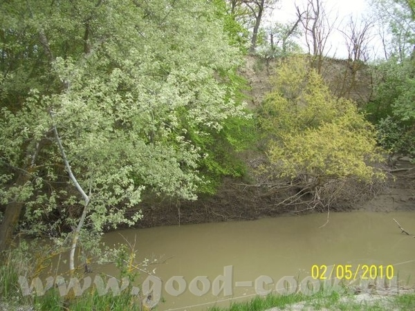 Степная речка, затерявшаяся в песках - 2