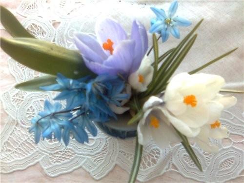 а вот вам первые цветочки с дачи