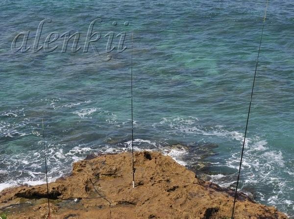 Стоя на вершине ракушечной скалы, обозреваем захватывающие картины моря и островков, волн и побереж... - 7