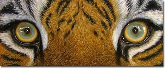 Рисунок тигра акрилом Урок по семислойной технике на демиарте Пионы, урок с демиарта Глаза тигра... - 3