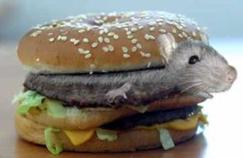 сабакбургер мышбургер - 2