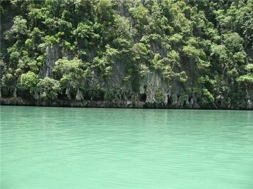 острова это природный парк,они известниковой породы поэтому впитывают влагу и растения живут, морск... - 2