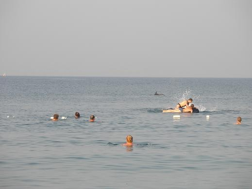 -Мариночка, а вот и обещанные фотографии моря - 3