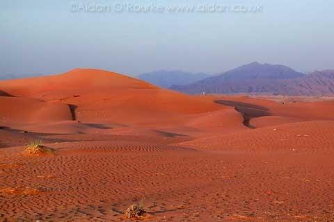 Пследнее фото Цвет пустыни меняется от эмирата к эмирату