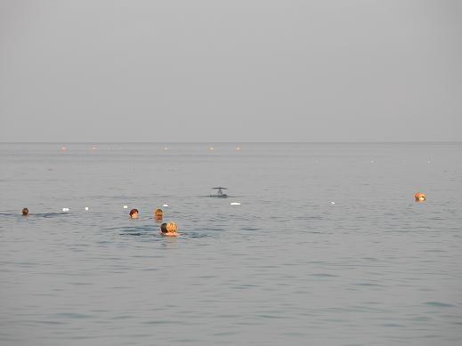-Мариночка, а вот и обещанные фотографии моря