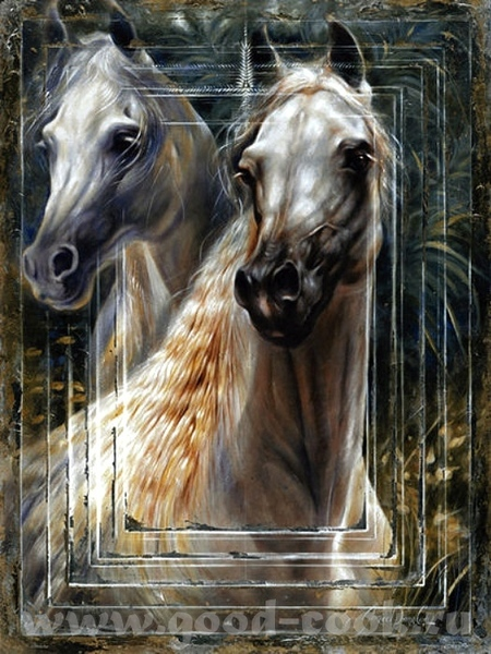 Балетки, батинки, кони - 6