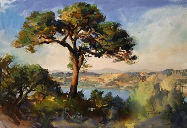 12 уроков акварельной живописи от английского художника Alwyn Crawshaw Диск 1 1 - 7