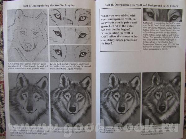 Волк Лев - 4