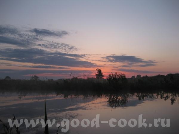 На выходных были на даче, ходили на рыбалку, а вокруг такая красота, что захотелось ею поделиться с... - 2
