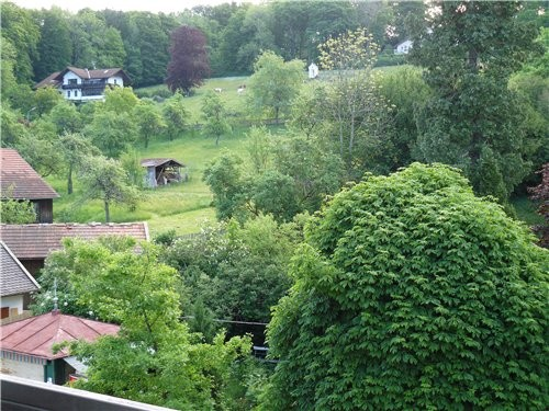 У мужа было так называемое повышение квалификации на Штаpнбергер озере - Starnbergersee, я поехала... - 2