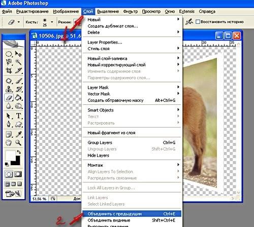 Зажимаем Alt и Shift и подтягиваем как на рисунке Если объект немного не попадает в картинку, его т... - 3