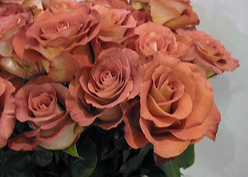 с розовой свадьбой вас