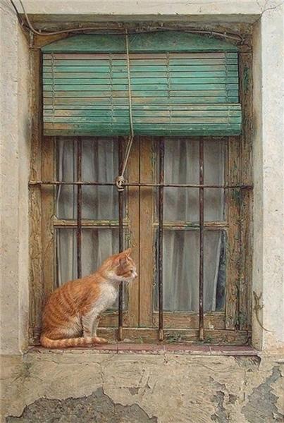 Кто котиков просил,читала все ,чтоб не пропустить,И не догонять,писать сил не было,жара замучила - 6