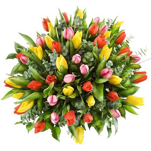 Алена, поздравляю тебя с днем рождения